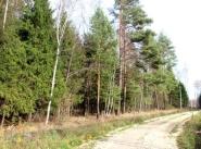 Коттеджный поселок Сеченка парк